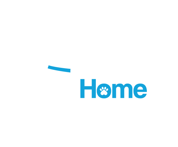 Your Home Vet